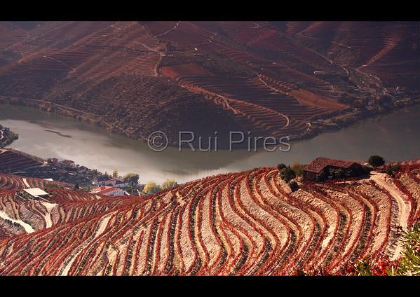 Douro River Valley RPDV_10015