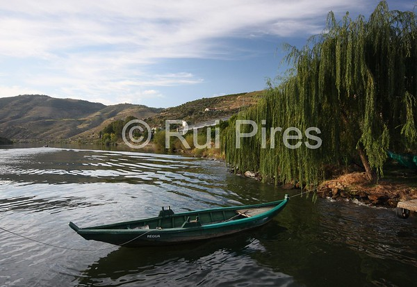 Douro River Valley
