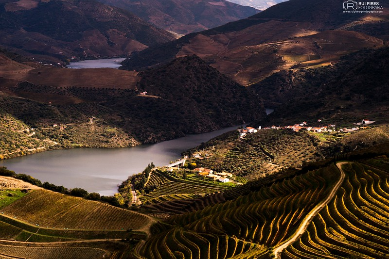 Douro´s River Valley