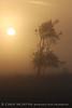 Fog, Joe Overstreet Rd , Lk Kissimmee FL (10)