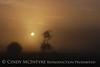 Fog, Joe Overstreet Rd , Lk Kissimmee FL (14)