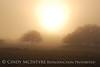Fog, Joe Overstreet Rd , Lk Kissimmee FL (17)
