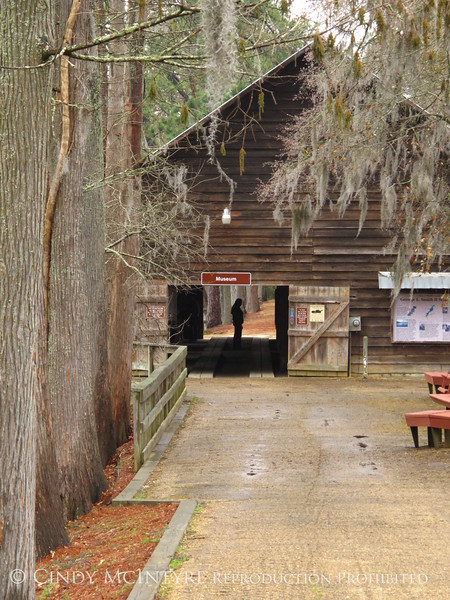 Grist Mill, George L Smith St Park GA (10)