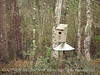 Wood Duck box, George L Smith St Pk GA