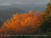 Brasstown Bald, GA October sunrise