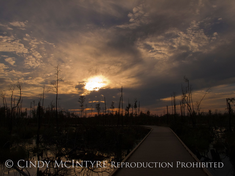 Boardwalk sunset, ONWR (2)