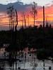 Boardwalk sunset, ONWR (3)