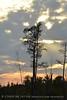 Boardwalk sunset, ONWR (10)