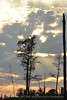 Boardwalk sunset, ONWR (9)