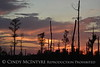 Boardwalk sunset, ONWR (8)