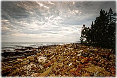 Oceanwood Afternoon
