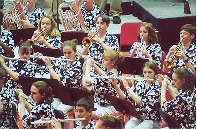DGS  Concert Bands