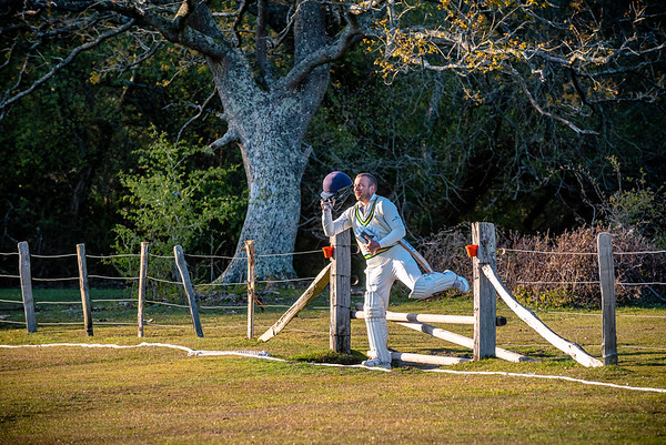 A batsmen enters the pitch over a barrier to keep the New Forest ponies off the pitch at Bramshaw CC