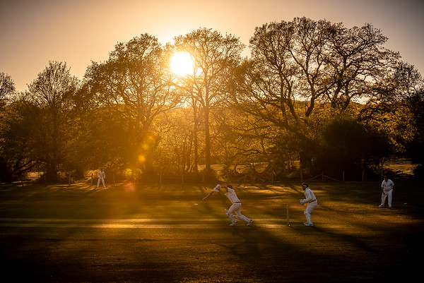 Late evening light at Bramshaw CC in the New Forest