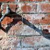 DTA - Roddie Romero & HCA 032715 002