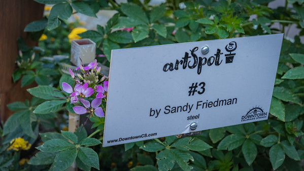 Art Spot - Sandy Friedman
