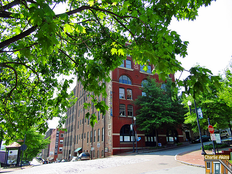 Riverviews Artspace has living spaces, studios and galleries