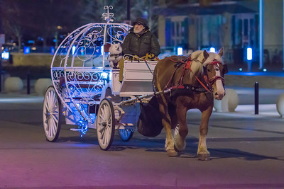 Cinderella's Horse Drawn Carriage