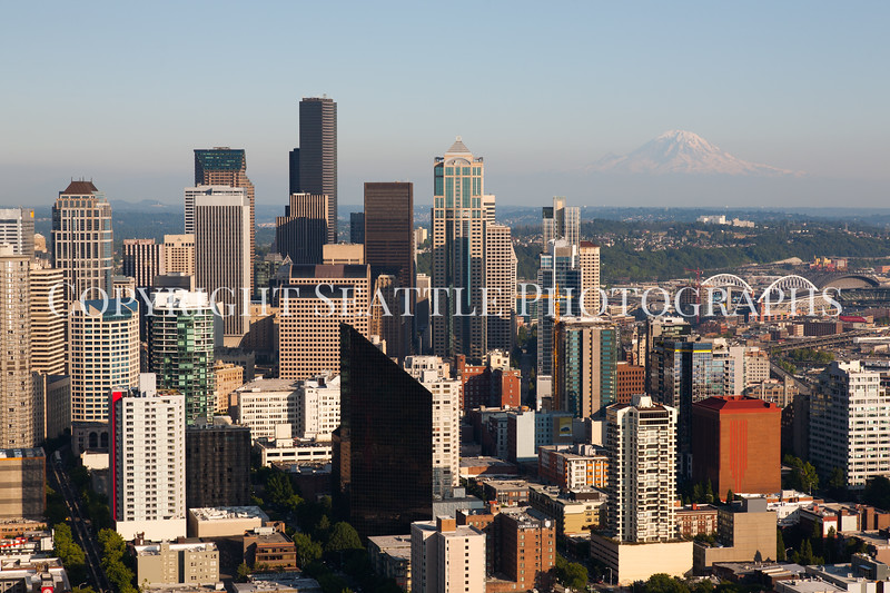Downtown Seattle Views 23