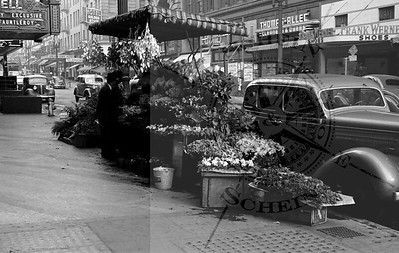 Powell St Flower Vendor