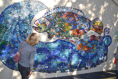 Unveiling of Bronte Fish Wave