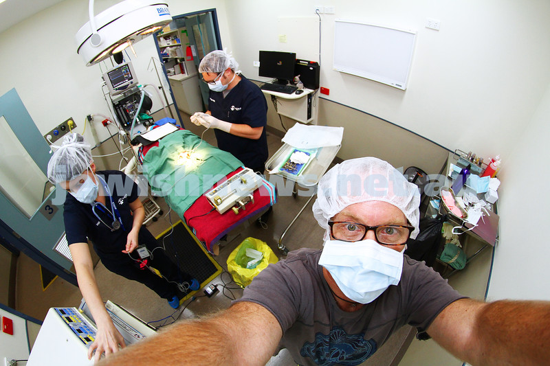 11-2-15. Lort Smith Animal Hospital. Dr Tristan Rich .  Selfie. Photo: Peter Haskin