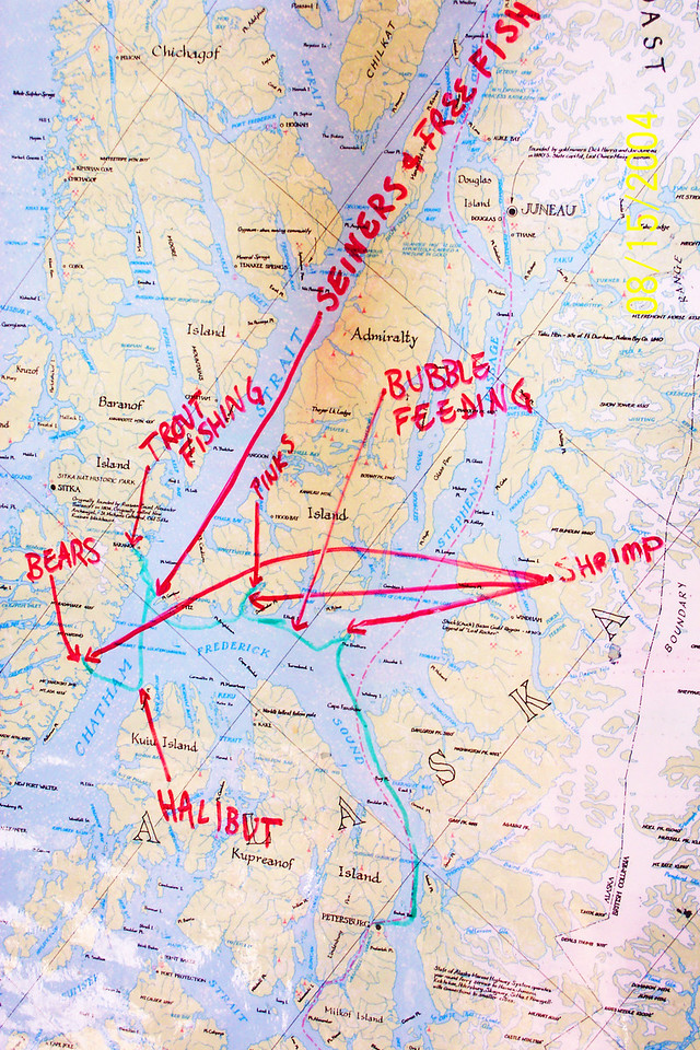 Our Alaskan adventure, mapped out.