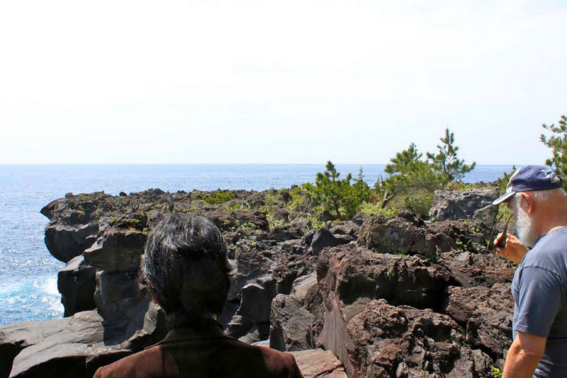 These are the distinctive lava cliffs at Jogasaki Kaigan National Park in Izukogen.