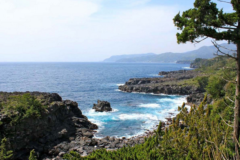 Looking south along the gorgeous coast of the Izu Peninsula.
