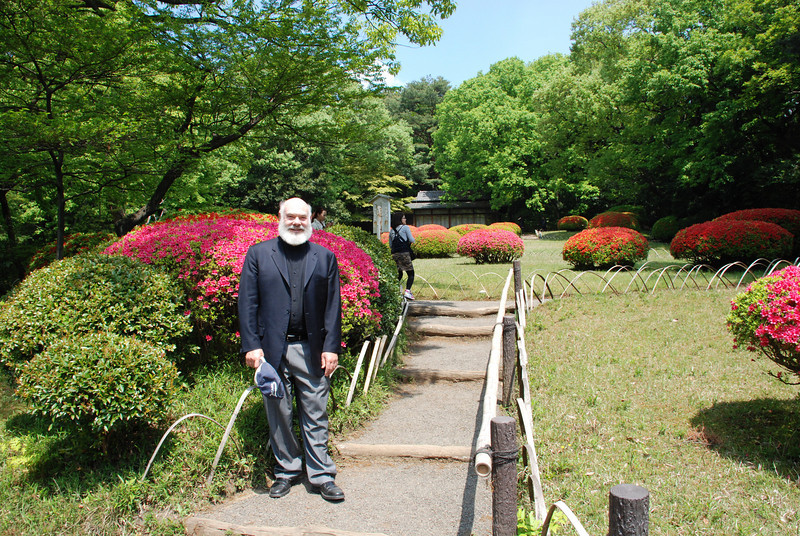 Enjoying the lovely azaleas in Meiji Shrine.