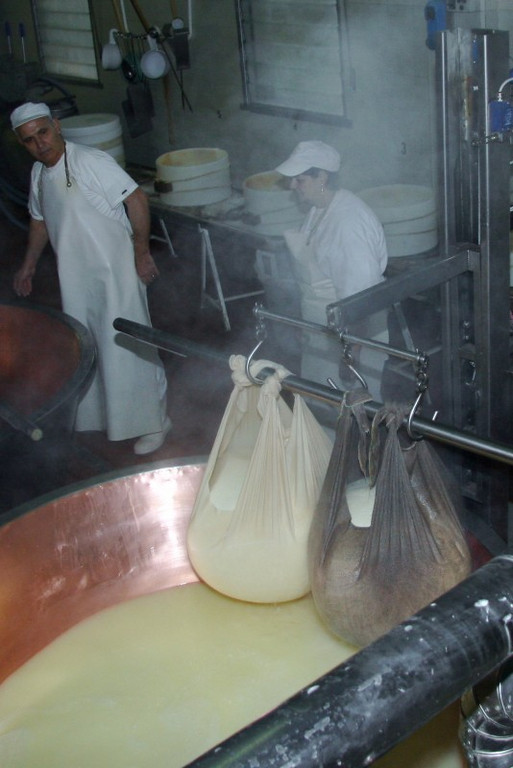 Draining - from the big cauldron of curdled milk, two masses of curd have been obtained. Each weighs 45 kg, or 99 pounds. They remain hung for about 10 minutes to let them drain the whey.