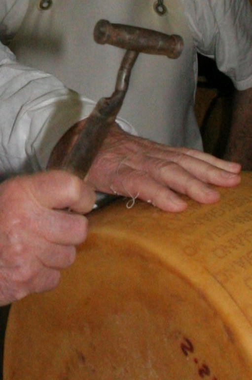 Tapping for quality. The farm's expert taps each wheel of cheese with a special tool. Years of experience give him the ability to judge a cheese's quality by the sound it makes when tapped.