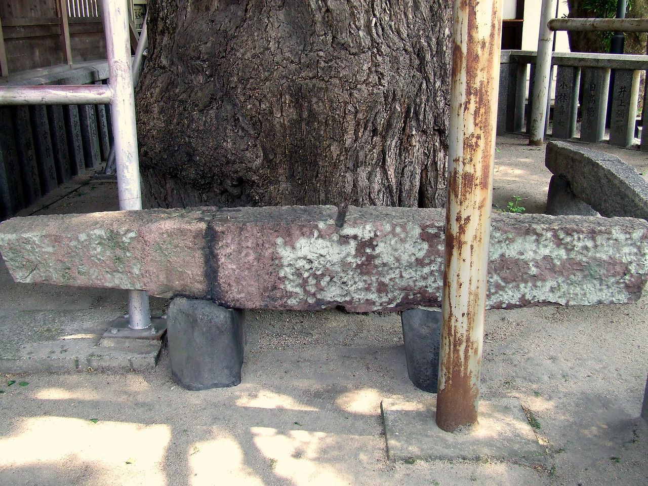 In front of the tree is this venerable stone. It was used as an anchor on one of the ships commanded by Kublai Khan in his failed attempt to conquer Japan in the late 13th century.
