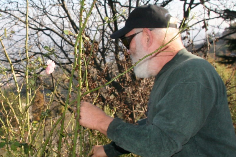 On the Truffle Hunt