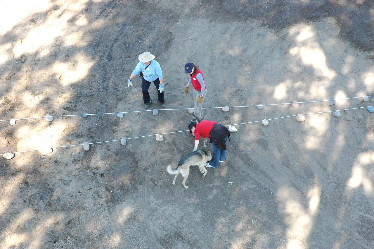 Then move the rope like a clock's hand. Move it a couple of feet, then lay another rank of stones. This gives the other workers a chance to connect the two ranks and start making the circular courses.