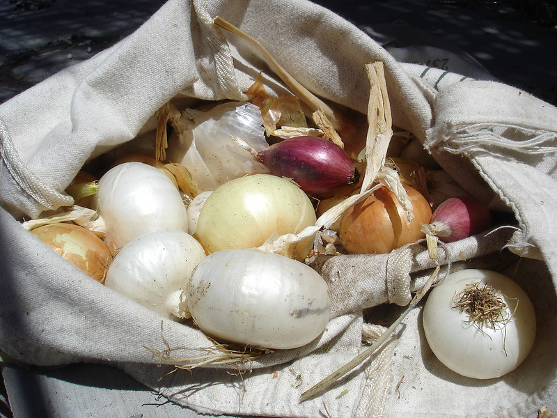 Onions - I love the small, pearl varieties.