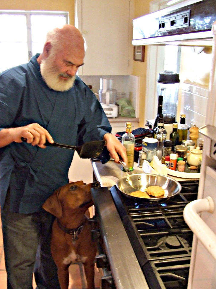 Ajax, about a year old here, inspects salmon-patty preparations in my Arizona home near Tucson.