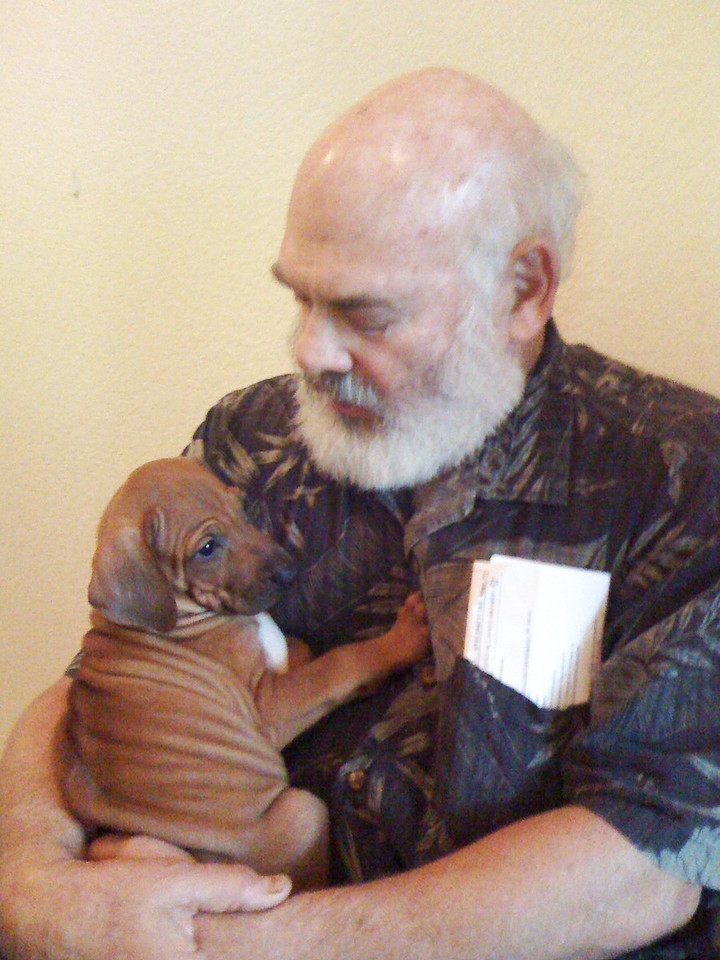 Meeting Ajax: Ajax was born April 26, 2008. Here, he and I meet for the first time in early June, 2008, in his birthplace, Sebastopol, California.