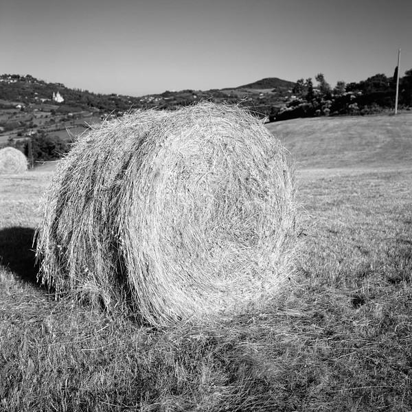 2  Haystack in Tuscony B&W