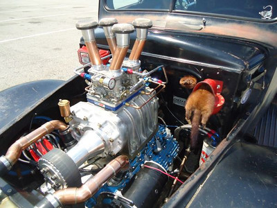 2012 Legends at Budds Creek event at MIR. Rat Rod featured blown flathead and a misplaced squirrel.