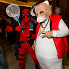 Deadpool and Kia Soul Hamster
