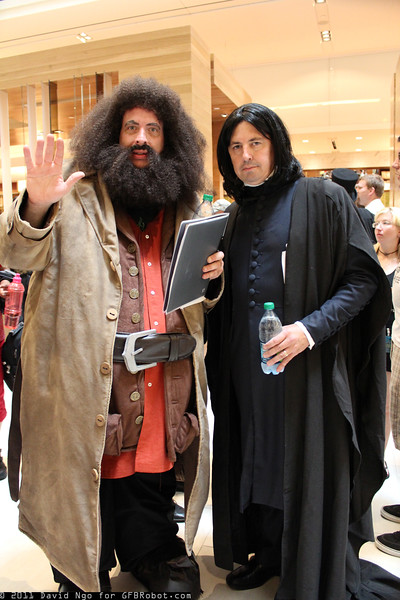 Rubeus Hagrid and Severus Snape