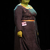 Princess Fiona participant in the 2008 DragonCon Costume Contest.