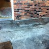 Root damage to driveway