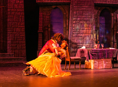 IHS Beauty and the Beast - Public