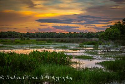 Sky Ablaze at Green Cay Wetlands V