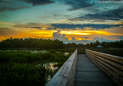 Sky Ablaze at Green Cay Wetlands IV