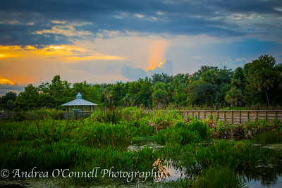 Sky Ablaze at Green Cay Wetlands VI
