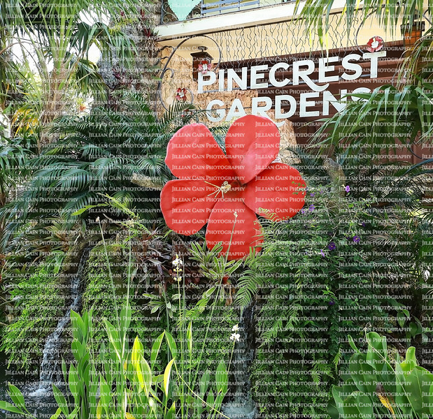 EDITORIAL ONLY:  Pinecrest, Florida, USA:  Pinecrest Botanical Gardens entrance sign.  Pinecrest Gardens is a 20 acre park located in Miami Dade County, as seen on May 23, 2021.