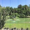 Pinecrest Garden a lush exotic botanical gardens, located in Pinecrest Village.